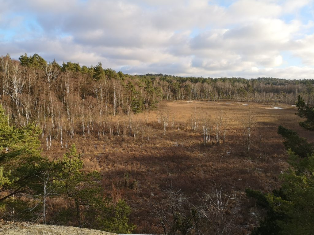 DS_Hike_2021_pic3